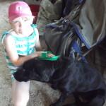 Ellie grooming Katie